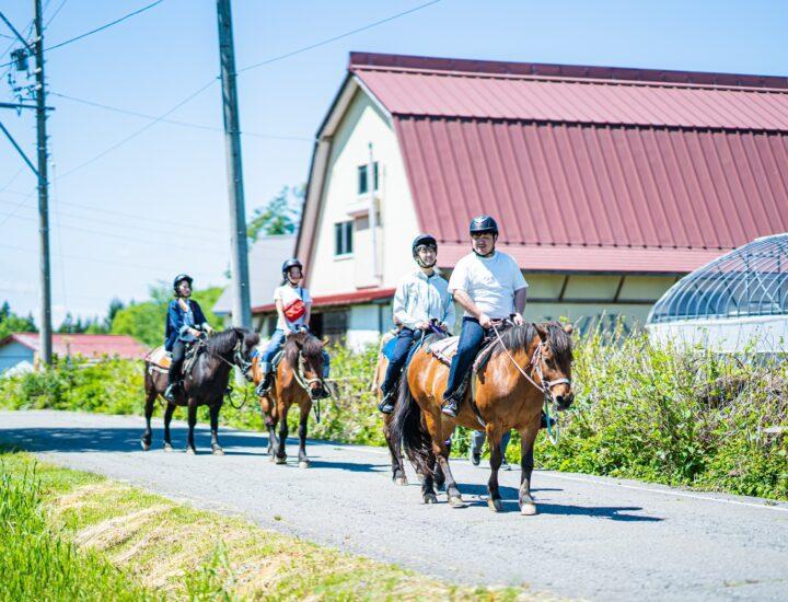 ここにしかない乗馬体験!?これであなたも木曽馬好きに。ひるがのホープロッジ